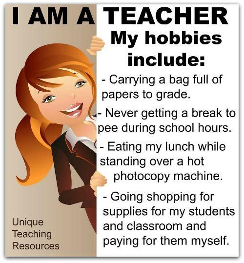 human body teaching resources teachers pay teachers