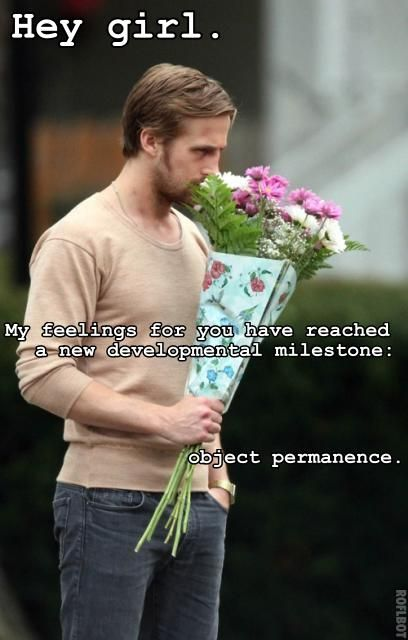 Developmental Psychology Ryan Gosling!