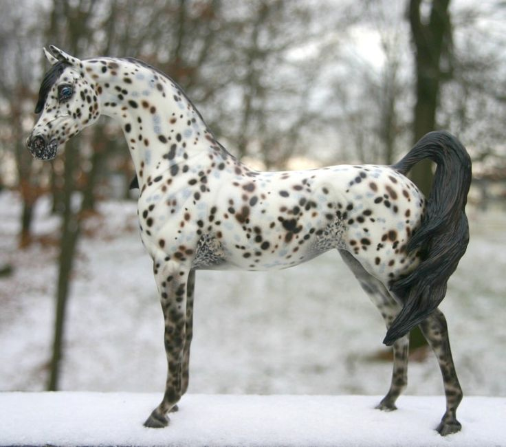 Ara Appaloosa | Reigning Lion Artistry - Custom Models by A'Merrie and Pony ExPrep ...