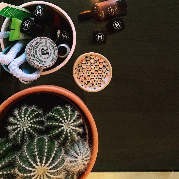 #home #cactus