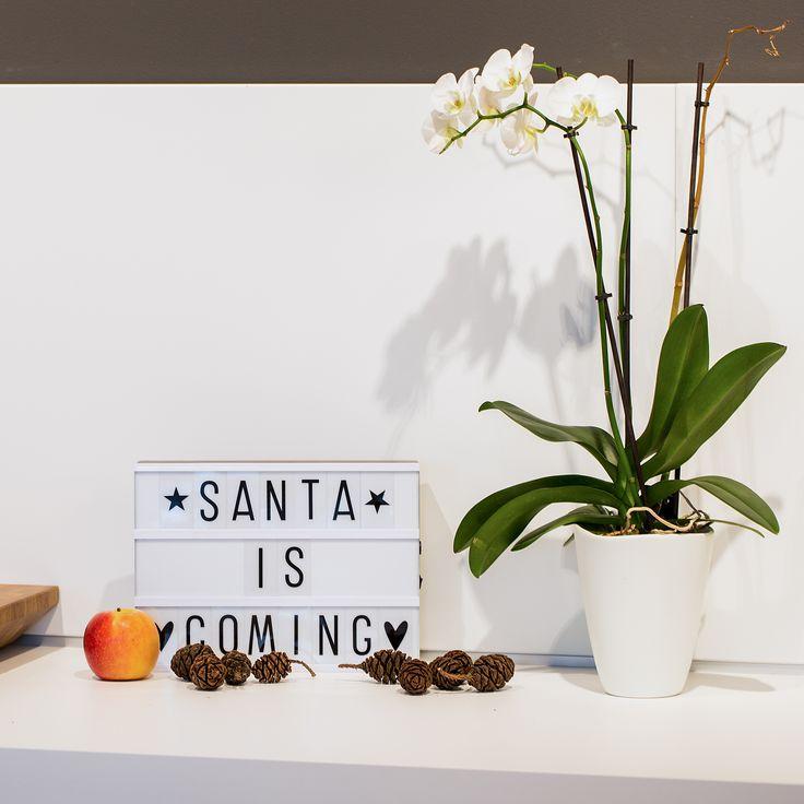 Bald kommt der Weihnachtsmann - Inspirierende Sprüche für die Weihnachtszeit. Schmücke Deine Wohnung mit Light Box, Letter Board oder Message Board für die Adventszeit. Interior Design Ideen für Groß und Klein oder zum Verschenken.