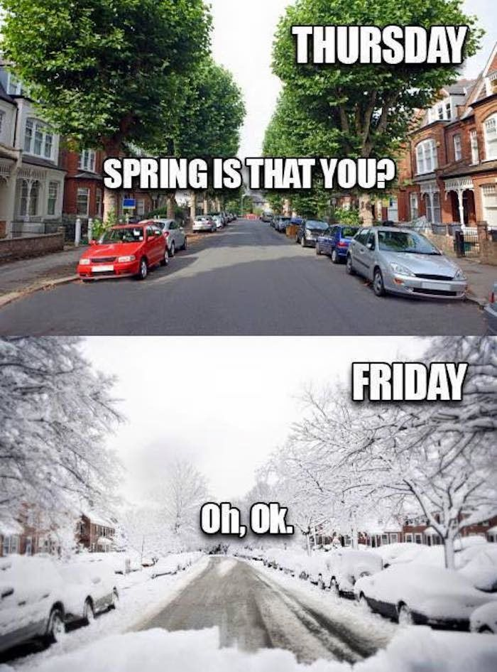 No More Snow Days Snow Day Truck Memes Funny