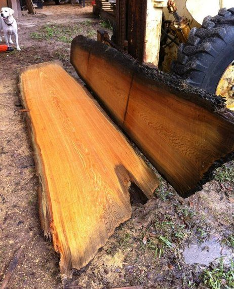 1000 Images About Heartwood Sinker Recovery On