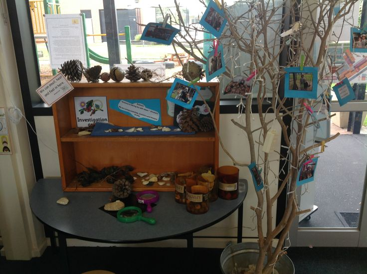 provocations set up throughout the room