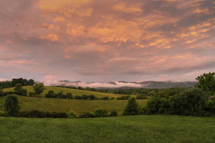 Blue Ridge School of Herbal Medicine | Blue ridge, Outdoor ...