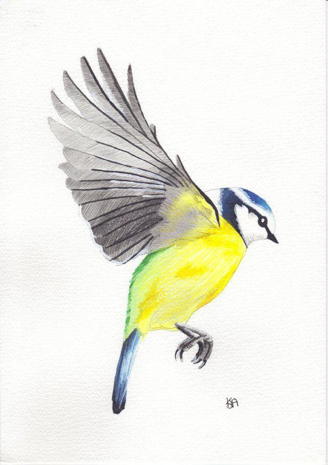 Blue tit landing Print