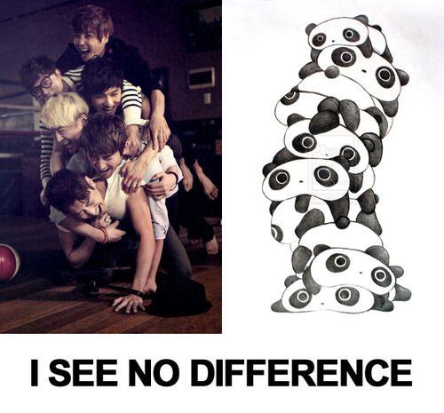 I see no difference #SHINHWA