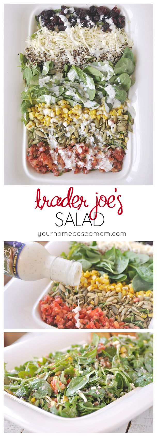 Trader Joe's Salad  -  fruit, veggies, cheese, nuts, dressing.  it sounds really good, want to try.  healthy, low carb.   lj