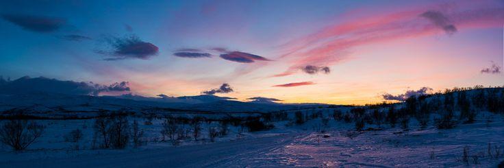 Vinterlyset i Stabbursnes