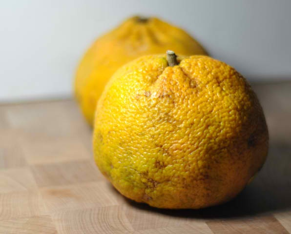 Ugly Fruit from Jamica.  Its a combo of a tangerine and grapefruit.