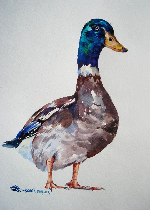Wild Duck Bird Original Watercolor Hand-painted painting