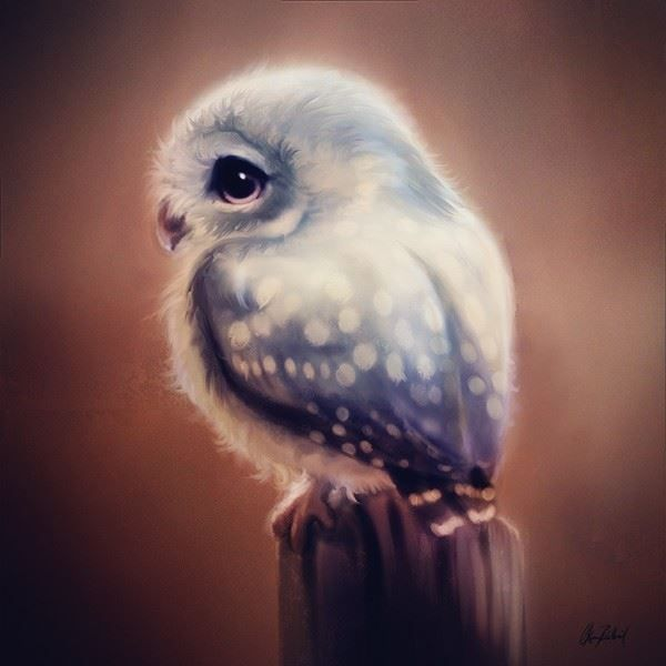 A cute little blue owl. From my cute creatures series.  You can see the rest of the series in my gallery. Thanks for looking, I hope you like it. My facebook page: www.facebook.com/ArtofO...
