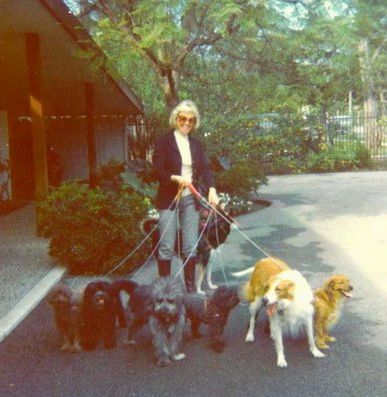 "Heading to film ""The Doris Day Show"". She brought 6 dogs each day to the set. They would all sit in director's chairs while they filmed."