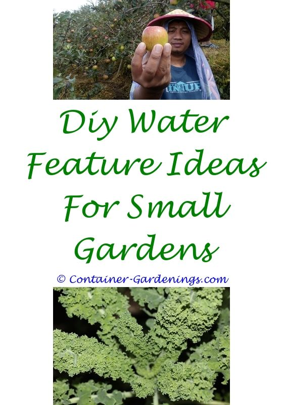 Indoor Container Gardening Small front yards, Garden ideas and