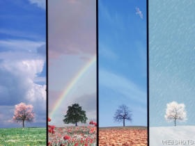 I love all 4 seasons! Such a cool picture!