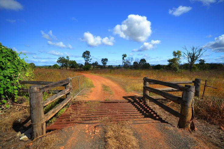 Cape York 29 - cattle grid