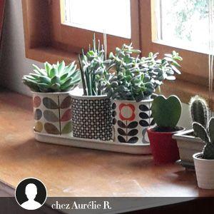 Pots de fleurs et support en �mail, �tain et inox Orla Kiely