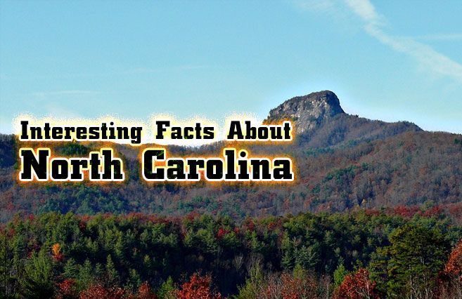 Interesting Facts About North Carolina https://mentalitch.com/interesting-facts-about-north-carolina/