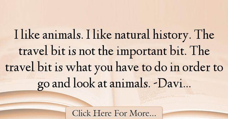 David Attenborough Quotes About Travel - 69245