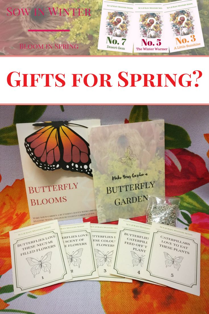 Butterfly gardens and Mstery Seeds- Free Shipping until lunchtime tomorrow (GMT+8)