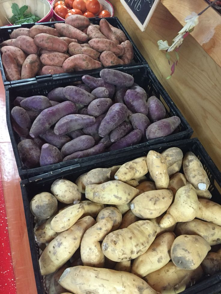 Sweet potatoes in every color. Fall time means fall vegetables. Create a sweet potato dish in a variety of colors using these heirloom sweet potato varieties.