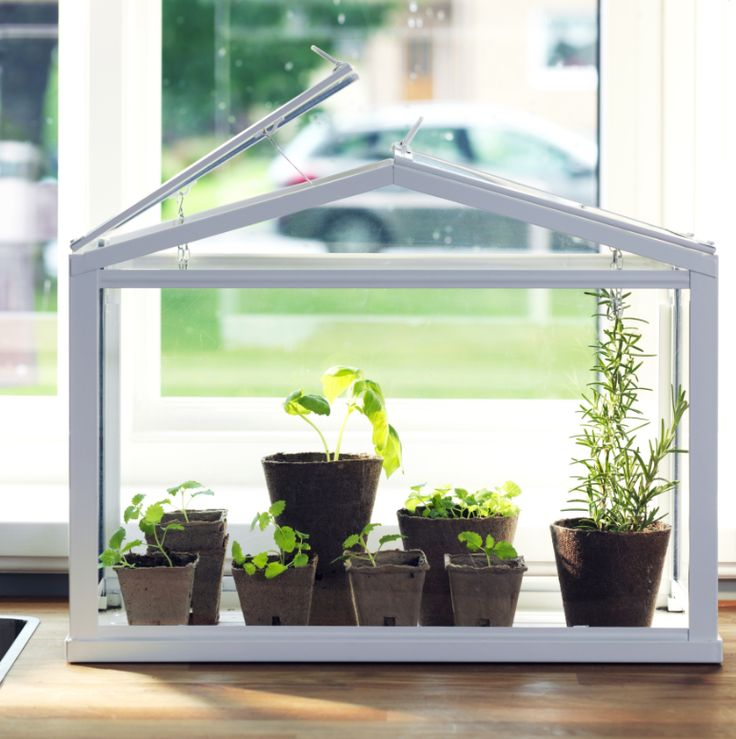 grow herbs and spices close to your kitchen door the ikea socker greenhouse is a - Garden Ideas Ikea