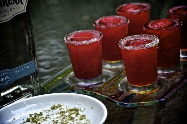 Frozen Hibiscus Margaritas: Frozen Hibiskus, Fun Recipe, Parties Drinks, Hibiskus Margaritas, Frozen Hibiscus, Savory Recipe, Vanilla, Fav Drinkscocktail, Hibiscus Margaritas