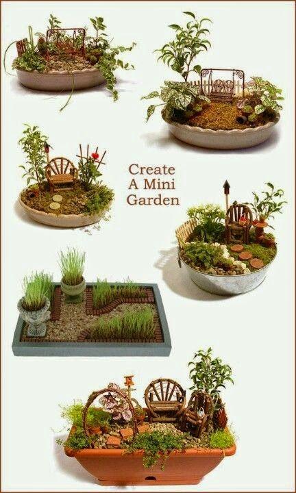 Miniature gardens                                                                                                                                                      More