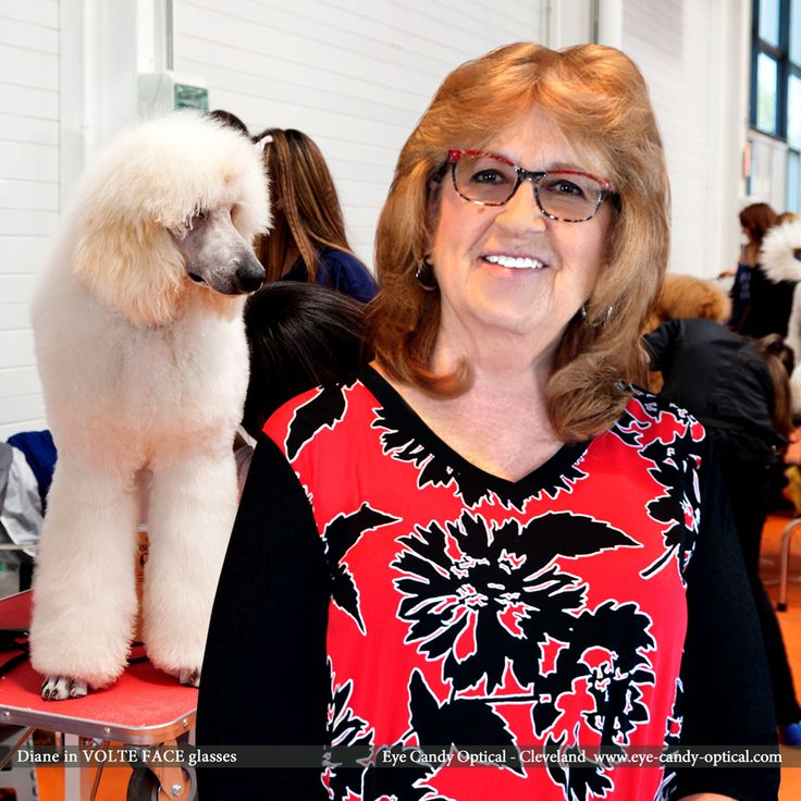 Diane is prepping for a Dog Show competition wearing her new designer glasses by Volte Face (J.F. Rey Eyewear Design). Eye Candy – the finest European Eyewear Fashion easily wins in every eyewear competition! Eye Candy Optical Cleveland – The Best Glasses Store! (440) 250-9191 - Book an Eye Exam Online or Over the Phone www.eye-candy-optical.com