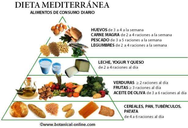 Piramide nutricional dieta mediterranea recetas para - Piramide alimentaria para ninos ...