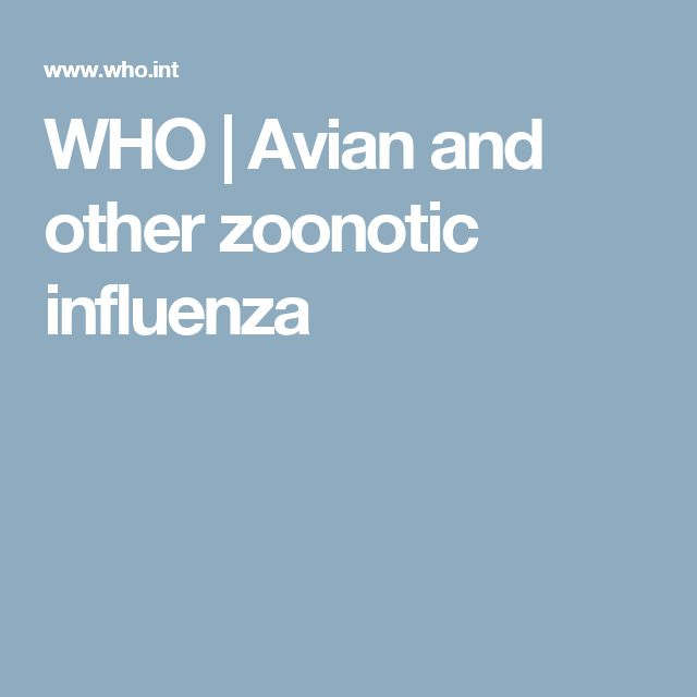 WHO | Avian and other zoonotic influenza