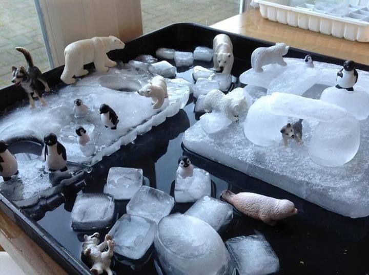 Miniature ice wonderland