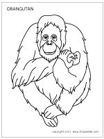 33 best Preschool Theme: Primates images on Pinterest
