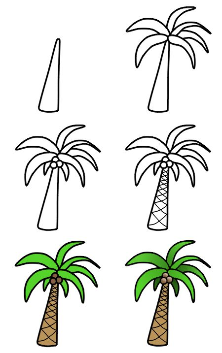 A nice cartoon palm tree can easily be drawn using these six amazing steps! :)