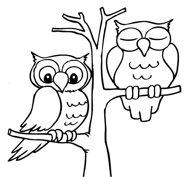 129 best images about coloring animals 3 on pinterest for Owl drawing easy