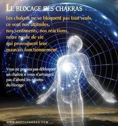Comprendre le fonctionnement des chakras et pourquoi ils peuvent se bloquer Tout d'abord il faut bien comprendre que les chakras sont des roues qui doivent être en perpétuel mouvement. La 1ere roue, c'est à dire le 1er chakra, le chakra racine, entraine les autres jusqu'au 7e chakra.