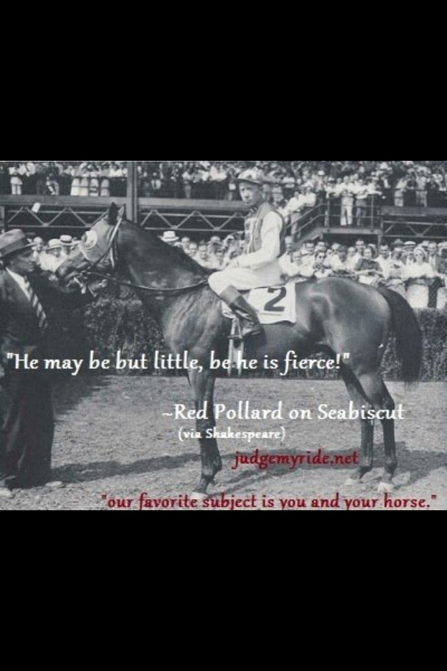 seabiscuit a collection of ideas to try about sports