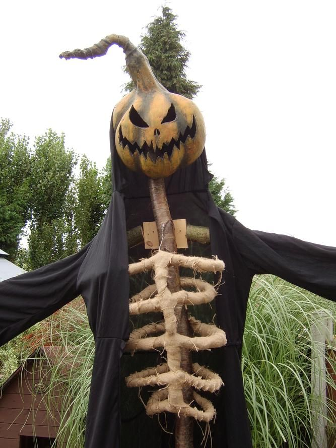 scarecrow - Halloween Scare Crow