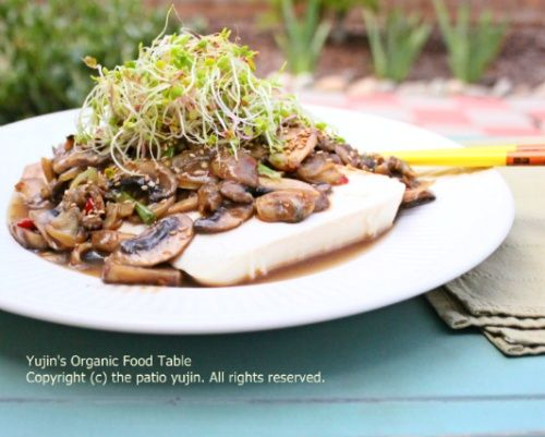 Plentiful diet food, silk soft tofu salad with mushroom sauce; Ingredients (2 servings):  1 Soft Tofu, 6 mushrooms, 1 red pepper, 6 onion slices, 1 ts garlic,  1/2 green onion, handful of sprouts, 1/2 TBS vegetable oil .  Source: 1/2 cup clams (or oysters),  1/4 cup water,  3 TBS soy sauce,  1/2 TBS starch powder,1/4 ts sea salt,1 TBS fruits syrup or honey, a little bit of sesame oil and pepper. 푸짐한 다이어트요리, 버섯소스 연두부 샐러드