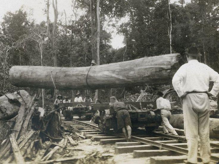 Lumberjack Shoes Wikipedia