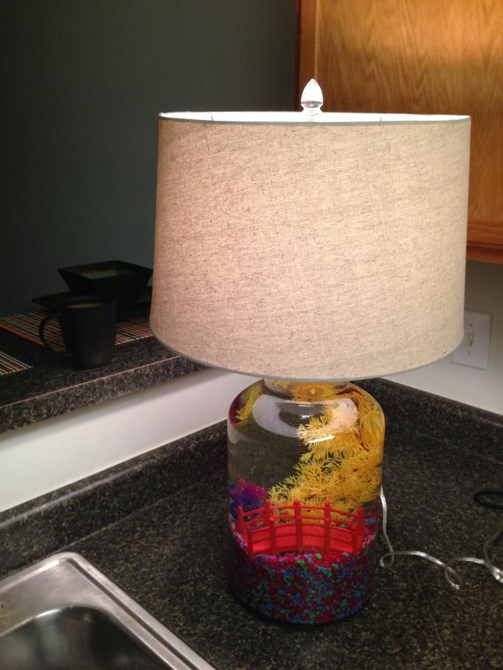 my fish tank lamp you can only put bettas in lamp tanks because they do not require a filter