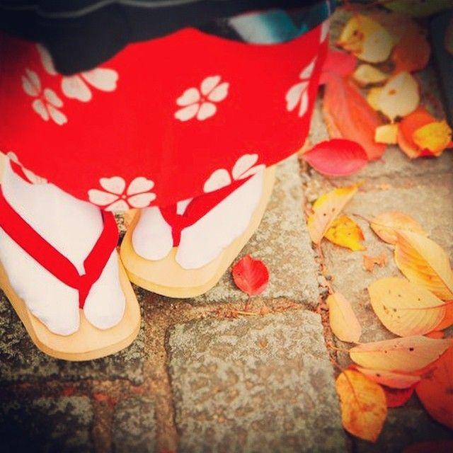 おこぼでさんぽ #maiko #geisha #geiko #kimono #kyoto #girl #cute #japanease #japan #舞妓 #芸妓 #芸者 #着物 #京都 #かわいい #일본 #교토 #기모노 #마이코 #四季 #おこぼ #こっぽり
