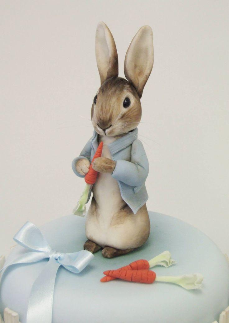 Emma Jayne Cake Design I Peter Rabbit Cake