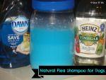 Natural Flea Shampoo ForDogs