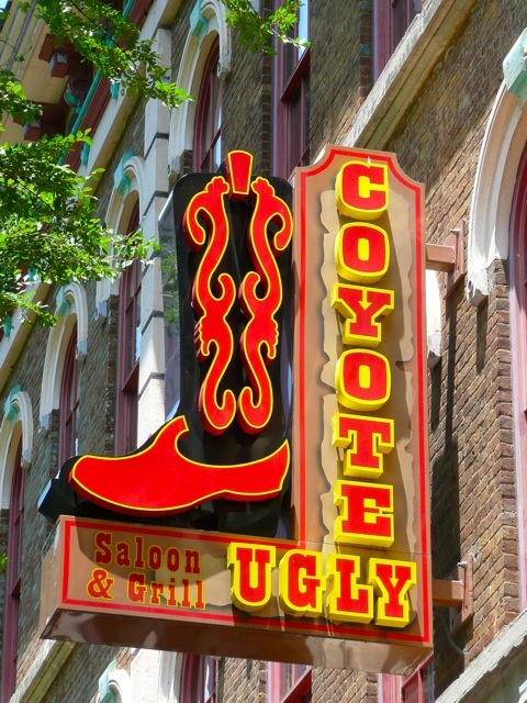 Went here several years ago.... Coyote Ugly Nashville, TN