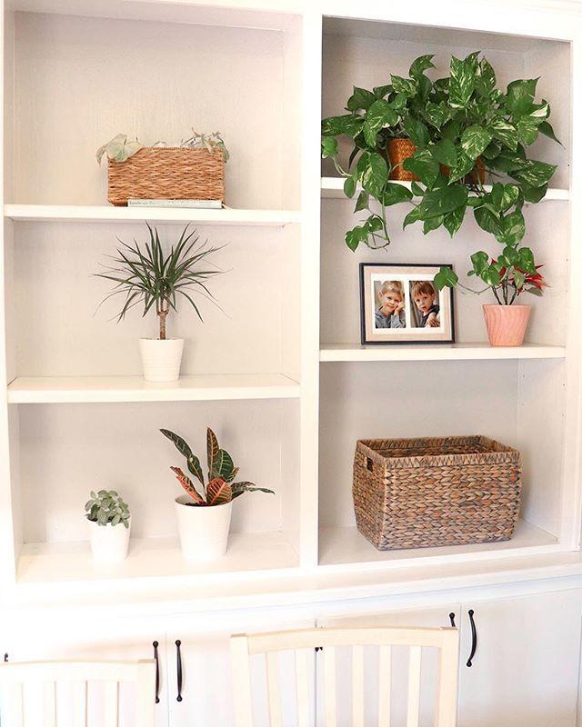 Minimalist Shelf Decor Minimalist Shelves Decor Minimalist Shelves Shelf Decor