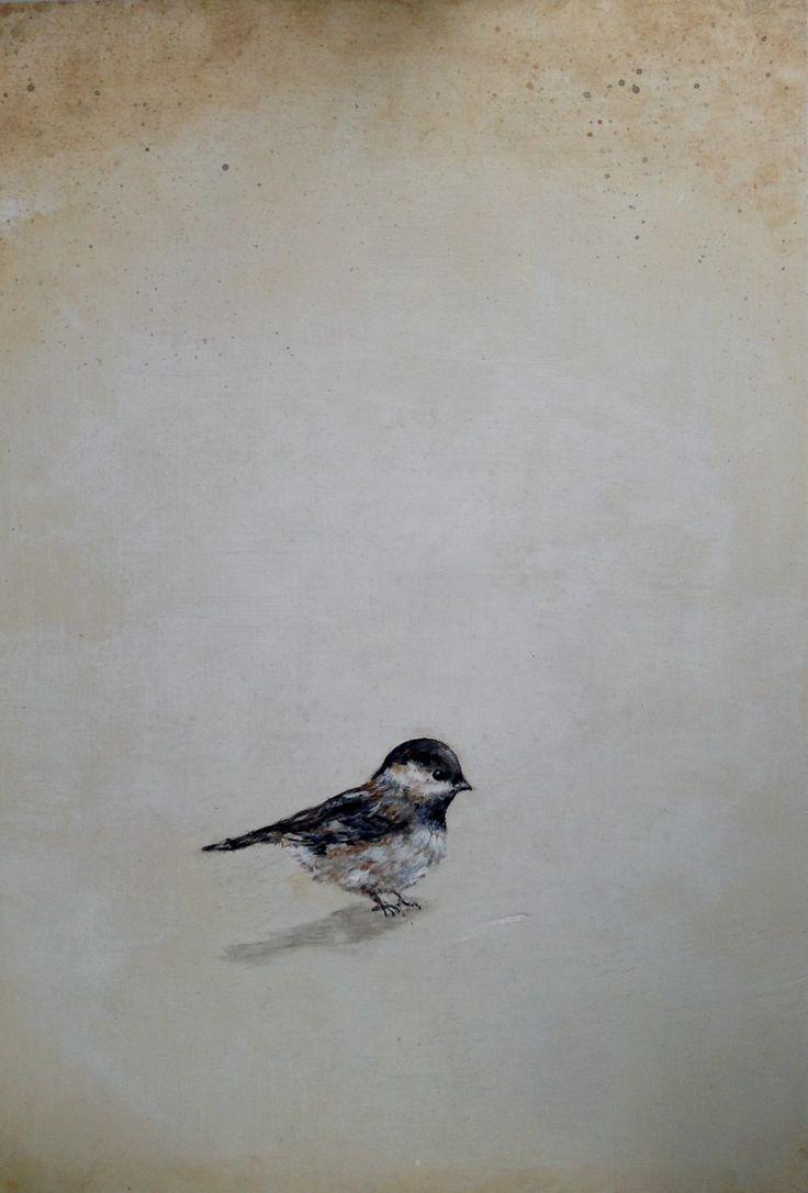Pájaro blanco y  negro