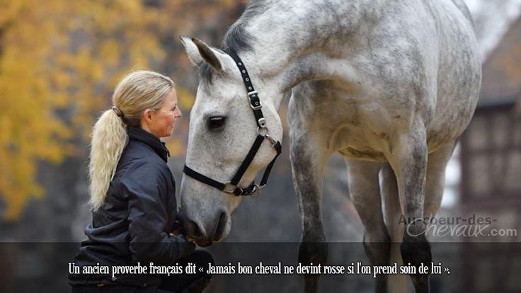 Un ancien proverbe français dit « Jamais bon cheval ne devint rosse si l'on prend soin de lui ».