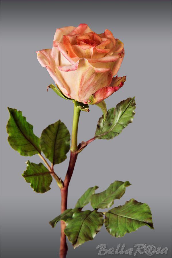Роза из полимерной глины. МК. - Ярмарка Мастеров - ручная работа, handmade