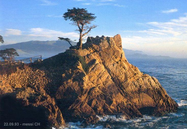 17 mile drive CA coast - Monterey